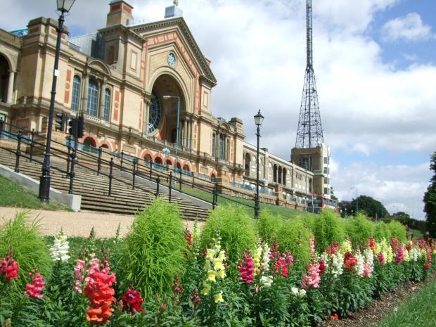 Go Ape for Alexandra Palace