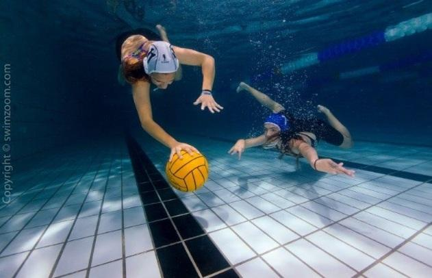 Water polo club launched in Haringey