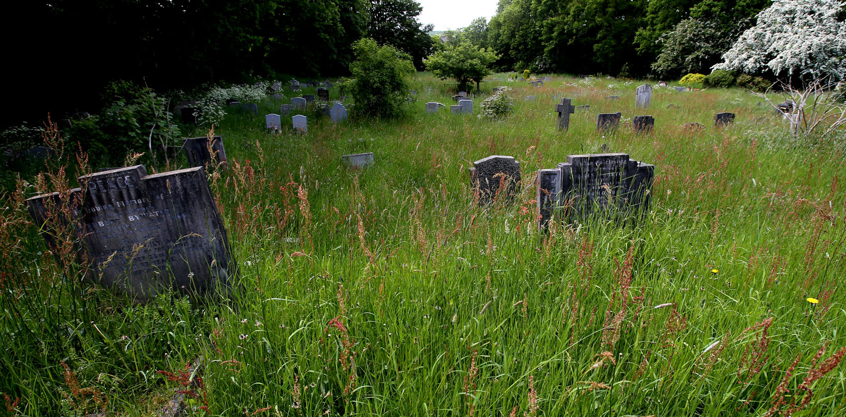 Enfield Council has taken over the management of the burial service
